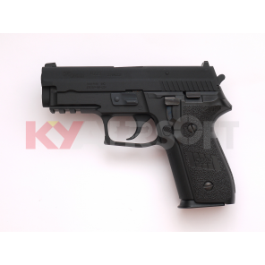 WE F229 Railed GBB Pistol BK (Full marking)