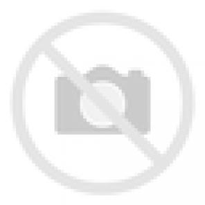 RATechReinforce Flute Valve forRATechNPAS Plastic Nozzle Set (VFC M4 / 416 GBB)