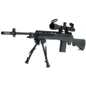 M14 RAS